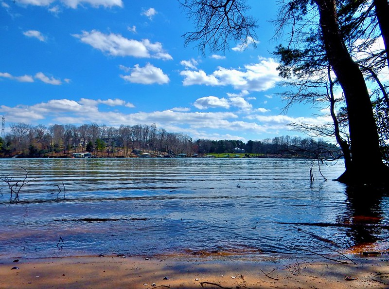 A view at Latta Nature Preserve with water, trees and clouds