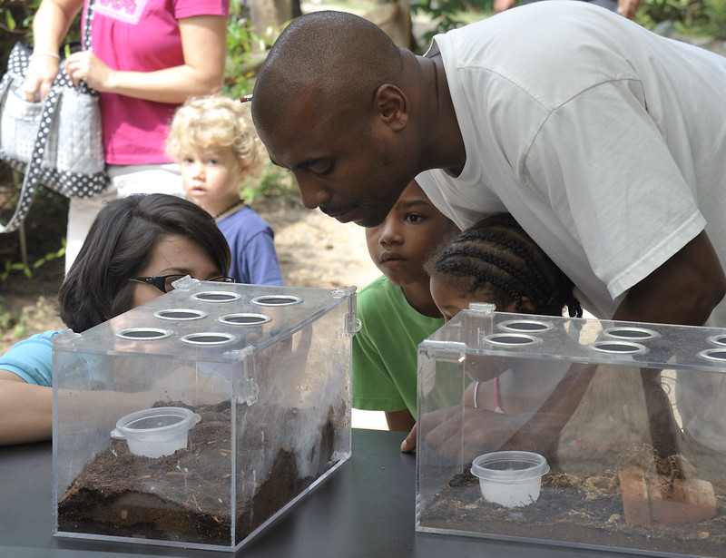 Man and several children look into clear boxes at a park